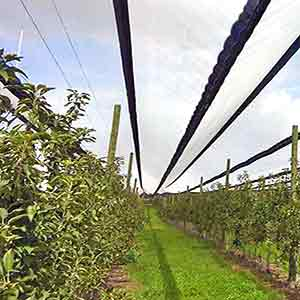 Protective Canopies & Netting for crops, stock, vehicles
